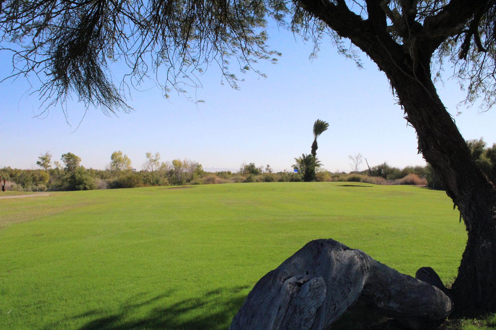 Golf - Cocopah RV and Golf Resort