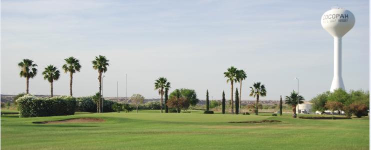 Daily Golf News Cocopah Rv And Golf Resort